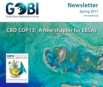 Spring issue of the GOBI newsletter now out