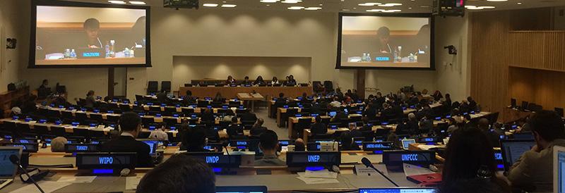 PrepCom3: progress towards an internationally-binding legal instrument for BBNJ