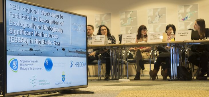 Baltic Sea EBSA workshop completes global coverage