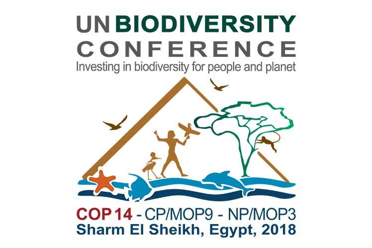 GOBI at CBD COP14, Egypt