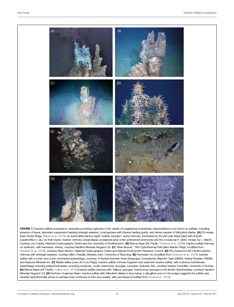 Inactive Sulfide Ecosystems in the Deep Sea: A Review