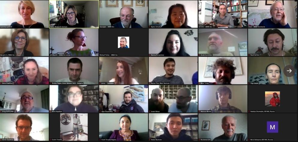 Virtual IMMA workshop breaks new ground